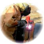 Оборудование для проведения сварочных и газорезательных работ